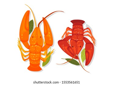 Seafood. Orange and red crawfishes, lobsters, crayfishes are with bay laurel leaves. Vector cartoon illustration isolated on white background for bar menu, cookbook, recipes, advertising.