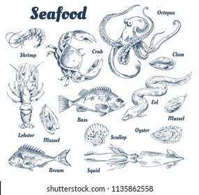 64b1499b1ce549 Seafood poster and species with headlines and types of marine dwellers.  Crab and lobster,