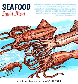 Seafood poster with squid meat for fishery market or fresh sea food shop and restaurant. Vector design template of fishing catch squids or shrimps and lobster, octopus or crab and cuttlefish