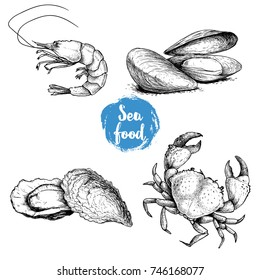 Seafood sketches set. Fresh shrimp, mussels and oysters, crab. Sea market products collection. Vector illustration isolated on white background.