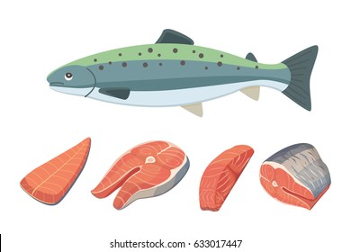 seafood vector illustration of salmon fish.