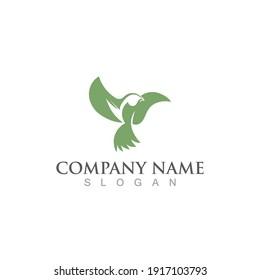 Seagull bird logo vector image template design