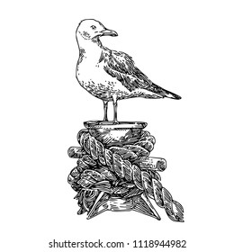 Seagull on mooring. Sketch. Engraving style. Vector illustration.