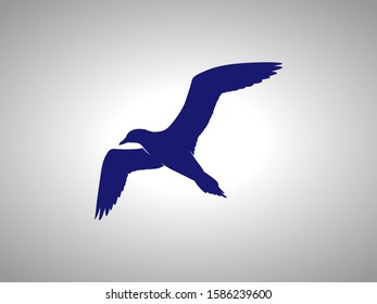 seagull silhouette on white background. isolated vector animal