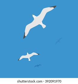 Seagulls flying on water, the flight of white birds on the blue sea. Editable vector flat illustration top view