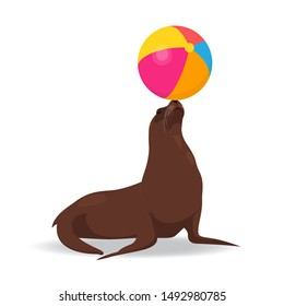 Seal balancing colored ball on nose. Vector illustration on white background