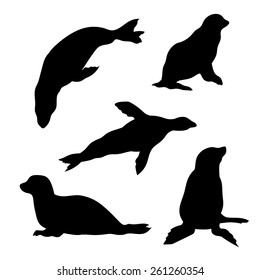 Seal set of silhouettes vector