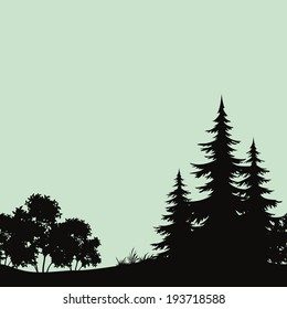 Seamless background, landscape, night forest with fir trees and bush silhouettes. Vector