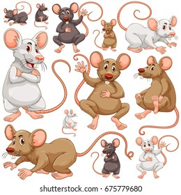 Seamless background with many rats illustration