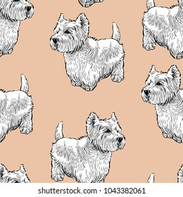 Seamless background of the scottish terriers
