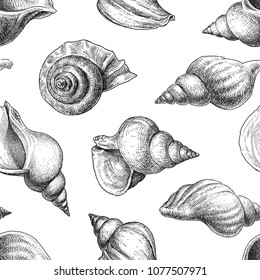 Seamless background of the seashells sketches