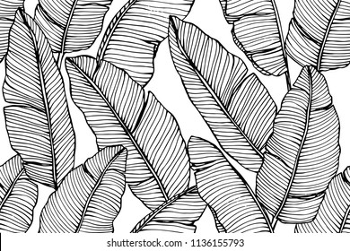 Seamless banana leaf pattern background. Black and white with drawing line art illustration.
