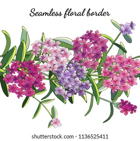 Seamless border with phlox flowers isolated on white. Excellent print for Excellent print for clothes, bed linens, fabric, textiles, wallpaper, wrapping paper, gift box.