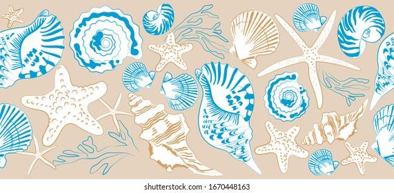Seamless border of shells and sea stars on  beige background. Hand drawn vector illustration  in vintage style. Print design for t-shirts, fabrics, sweatshirts,  wedding invitation.