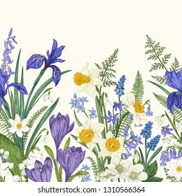 Seamless border with spring flowers. Iris, crocus, narcissus, snowdrop, lily of the valley. Botanical illustration. Colorful.