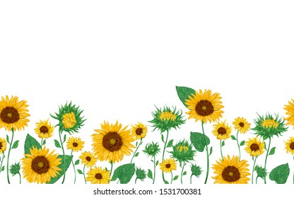 Seamless border with sunflowers set.  Isolated elements. Collection decorative floral design elements. Vintage vector illustration in watercolor style.