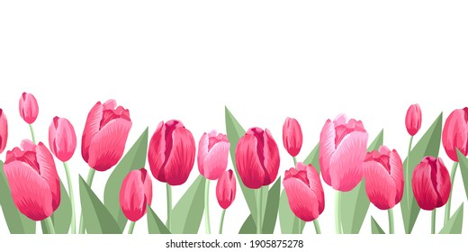 Seamless border of tulips flawers. Vector illustration, background, pattern, print for packaging paper, postcards, textiles. Colorful pink tulips with leaves, a frame, garland of flowers
