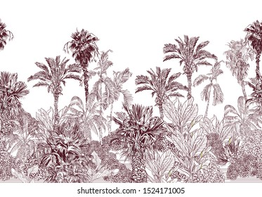 Seamless Border Vintage Lithograph Illustration of Jungle Forest Tropical Palms Exotic Plants Oriental Theme