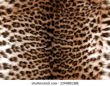 Seamless brown leopard fur pattern, realistic luxury background. animal skin. decoration wallpaper