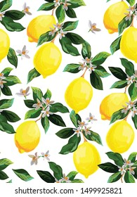 Seamless citrus vector pattern on white background. Hand drawn illustration with lemons. Tropical fruit wallpaper.