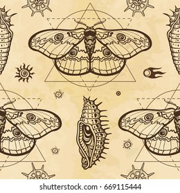 Seamless color pattern: image of a butterfly, larva, sacred geometry. A background - imitation of old paper. Vector illustration.