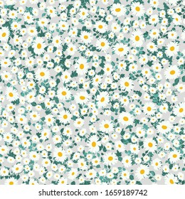 Seamless daisy pattern in small cute wild simple flowers. Liberty style millefleurs. Floral chamomile background for textile, wallpaper, pattern fills, covers, surface, print, wrap, scrapbooking.
