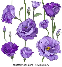 Seamless floral decorative pattern with violet flowers and buds. Eustoma, Lisiantus, Texas bluebell, Prairie tulip gentian. Endless spring texture for your design, fabrics, decor.