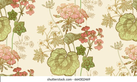 Seamless floral pattern. Green foliage, pink geranium flower or pelargonium on a white background. Vintage vector illustration. Hand drawing. Template for packaging, textiles, paper, wallpaper, fabric