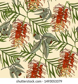 seamless floral pattern of hand drawn red gravillea banksii flower and gum nut,australia native plant
