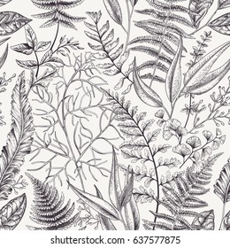 Seamless floral pattern with leaves and ferns. Vintage floral background. Botanical vector illustration. Engraving. Black and white.