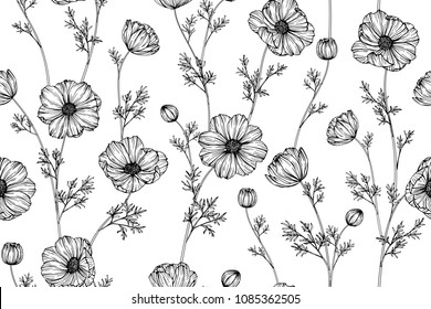 Seamless flower pattern background with Cosmos flower and leaf drawing illustration.