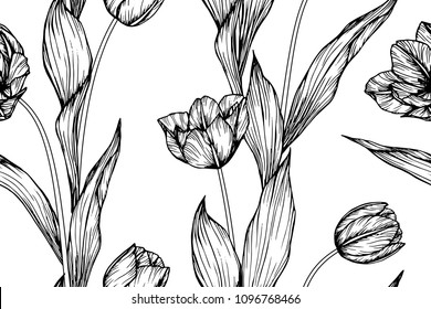 Seamless flower pattern background with Tulip flower and leaf drawing illustration.