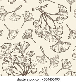 Seamless with ginkgo leaves. Cosmetics and medical plant. hand drawn.