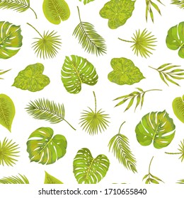 Seamless green philodendron fern bamboo leaf areca palm vector pattern. Natural simple background on white. Hand drawn leaves tropical pattern.
