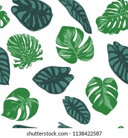 Seamless Hand Drawn Botanical Exotic Pattern with Philodendron and Alocasia Leaves. Vector Jungle Foliage in Watercolor Style. Seamless Tropic Leaf Background for Textile, Cloth, Fabric, Paper.