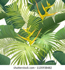 Seamless hand drawn tropical vector pattern with bird of paradise flowers and exotic palm leaves on white background. Vector illustration.
