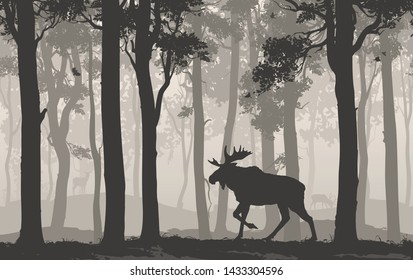 Seamless horizontal background with moose walking in the forest, flying birds and deer in the distance, vector illustration