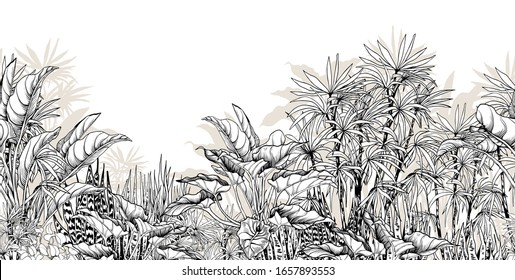 Seamless horizontal border with black and white tropical foliage. Hand drawn vector illustration isolated on white.