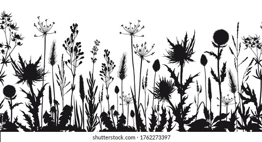 Seamless horizontal border with wild flowers and thistle silhouettes. Hand drawn vector illustration isolated on white.