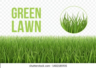 Seamless horizontal green lawn of grass pattern and isolated magnified circle of grass patch. Spring or summer plant lawn. Photo realistic grass on a transparent background.