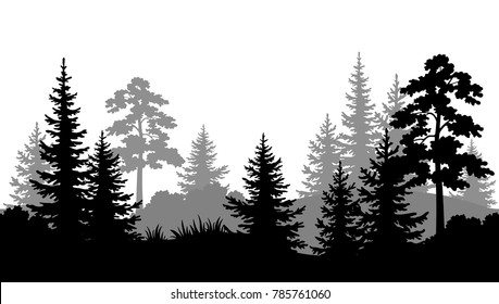 Seamless Horizontal Summer Forest with Pine, Fir Tree, Grass and Bush Black and Gray Silhouettes on White Background. Vector