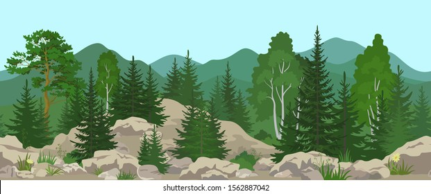 Seamless Horizontal Summer Mountain Landscape with Pine, Birch and Fir Trees, Green Grass and Yellow Flowers on the Stone Rocks. Vector