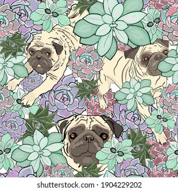 Seamless illustration of succulents and pugs. Floral pattern with dogs for printing on cards, florists, designers, pet shop, flower wallpaper