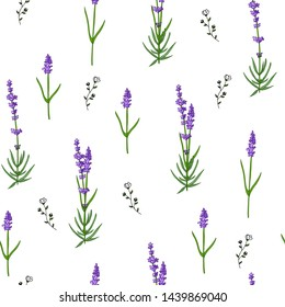 Seamless lavender pattern isolated on white background with wild flowers.