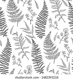 Seamless light pattern with fern leaves on white background. Black and white pattern with delicate leaves.