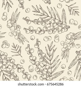 Seamless pattern with acai berries and palm. Superfood. Vector hand drawn illustration