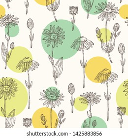 Seamless pattern with arnica montana: arnica flower and leaves. Cosmetic and medical plant. Vector hand drawn illustration