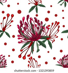seamless pattern of australia wild flower tasmania waratah on white in vector illustration
