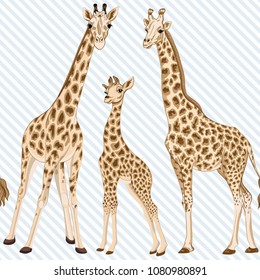 Seamless pattern, background  with adult giraffe and baby giraffe. On blue and white diagonal stripes background. Realistic drawing, animalism. Vector illustration.