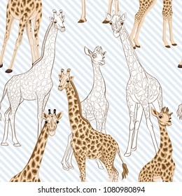 Seamless pattern, background  with adult giraffe and baby giraffe. On blue and white diagonal stripes background. Realistic drawing, animalism. Vector illustration.  Colored and outline drawing.